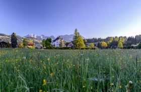 THEMENBILD, Landschaft